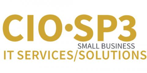 CIO SP3 small business IT services/solutions